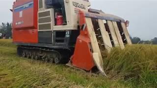 Máy Cắt Lúa Liên Thanh Siêu Nhanh R1-551 | Amazing So Fast Harvesting Machine