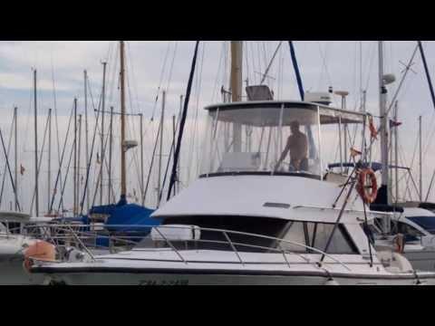 Phoenix Marine 33 - Marina Estrella Alicante
