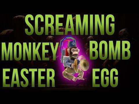 Screaming on Fire Monkey Bomb Easter Egg! Tranzit Zombies Easter Egg!