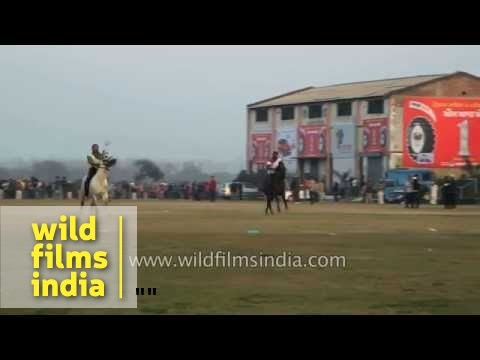 Horse race competition at Rural Olympic - Punjab