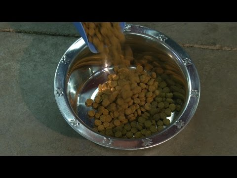 "Scientific Formula For Feeding Dogs  Top Secret Information ""LOOK NOW"""