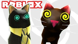 Cats in Roblox have gone CRAZY!!