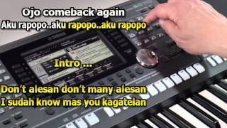 Video Aku Rapopo  Julia Perez Karaoke Keyboard download MP3, 3GP, MP4, WEBM, AVI, FLV Oktober 2019