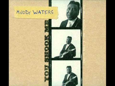 Muddy Waters - Five Long Years