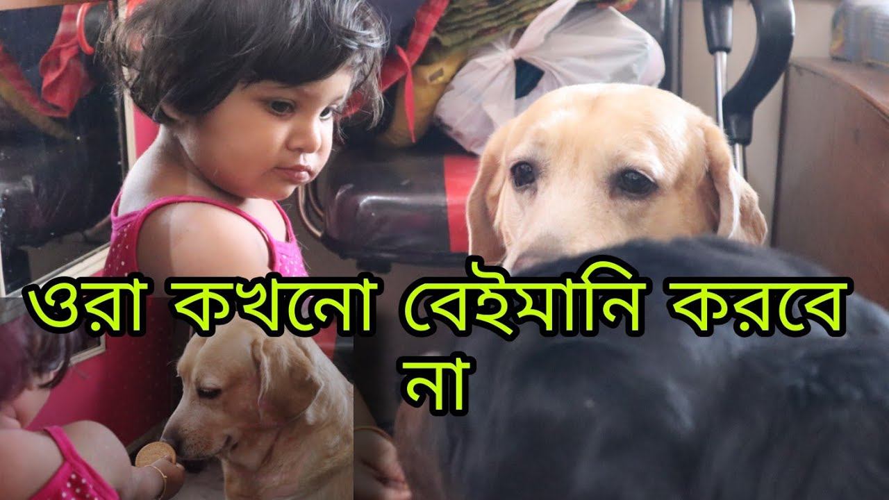 Bengali Vlog # My Daughter's Morning Routine With Her Brother & Sister   Friendship Goal   Poulami