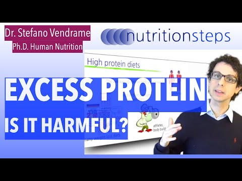 Is Excess Protein Harmful?