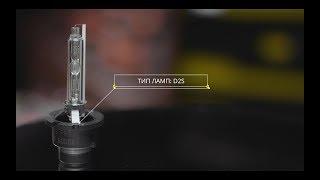 Ксеноновая лампа rVolt D2S Pro (русская версия)