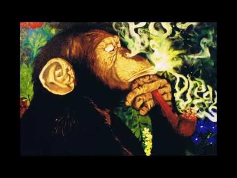 Schoolboy Q x Mac Miller Type Beat - Haze - Sumerian Productions
