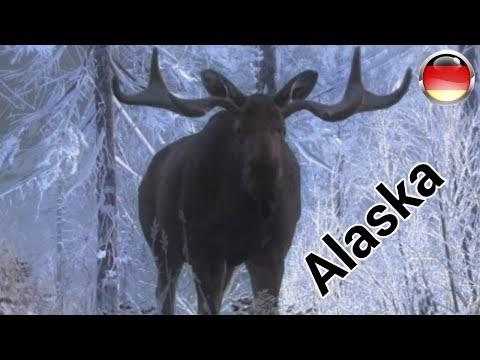 """Jagen mit Pratze und Fape MP #11 - """"Alaska"""" 1/3 Deutsch/German [HD]"""