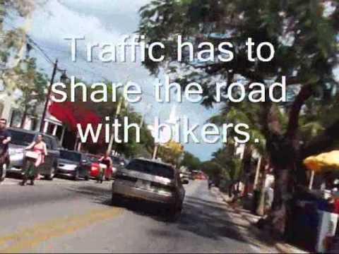 Key West Biking to Dad's Office