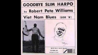 Robert Pete Williams - Viet Nam Blues