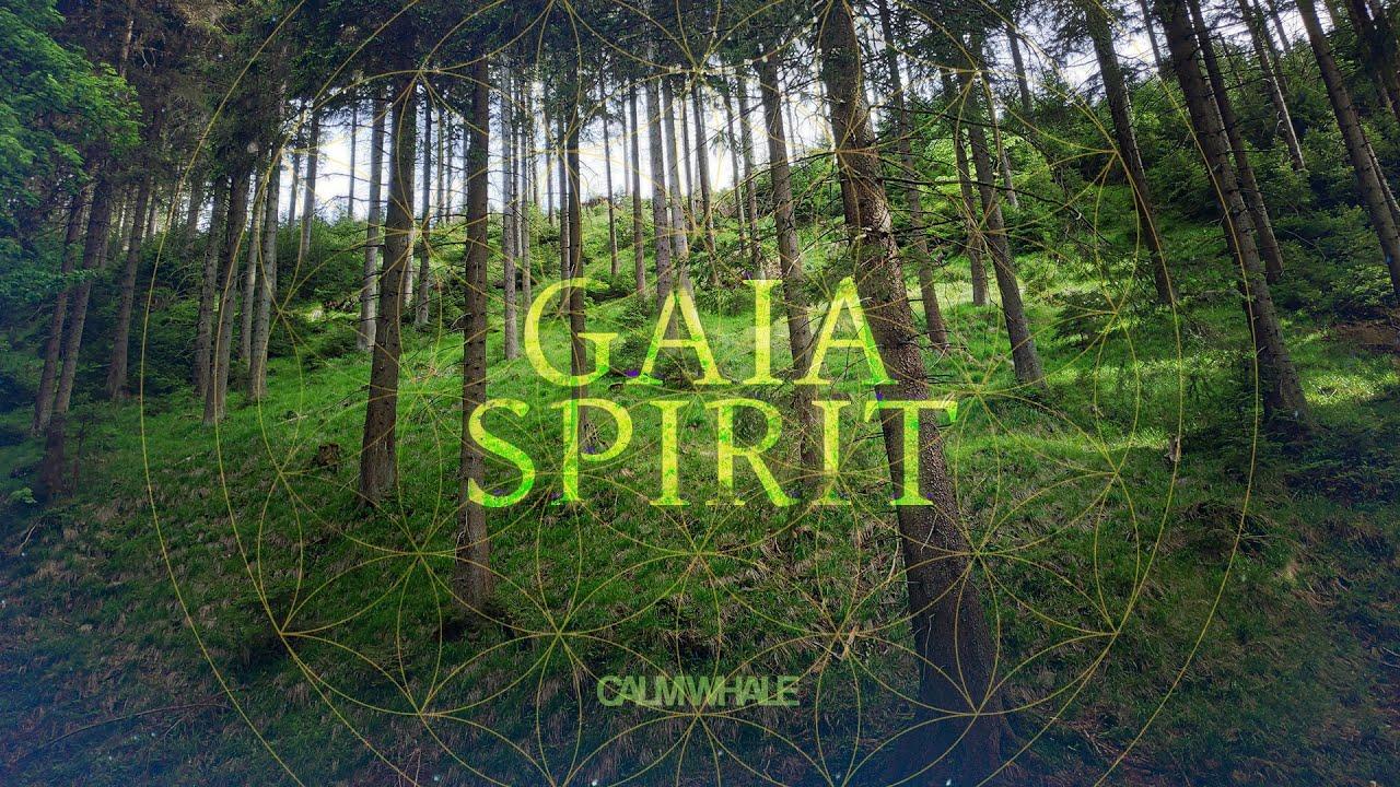 GAIA Spirit Grounding Meditation 🌲 Forest Healing | Gong, Tingsha & Nature ROOT Chakra Meditation
