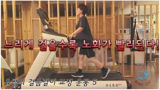 유쌤의 걷기 교정 운동 5