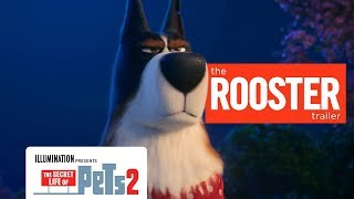 'The Secret Life of Pets 2' Rooster Trailer