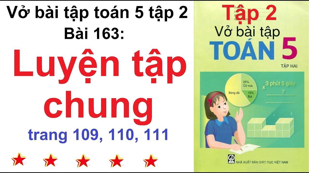 Vở bài tập toán lớp 5 – Bài 163 – Luyện tập chung trang 109, 110, 111