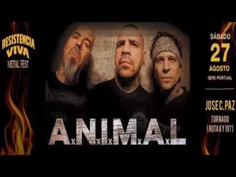 ANIMAL RESISTENCIA VIVA METAL FEST   TORNADO 27-08-16