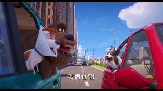 【寵物當家2】狗狗篇 - 6月6日 中、英文版同步歡樂登場