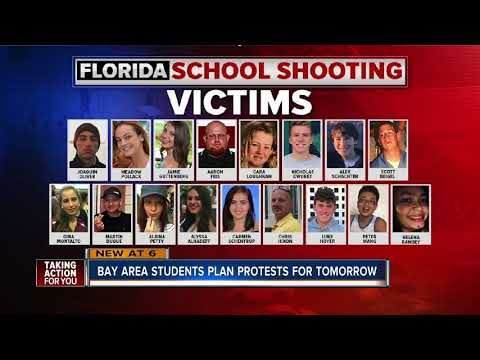 Tampa Bay area students to take part in national walkout remembering Parkland shooting victims