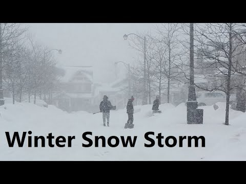 Winter Snow Storm in Toronto and GTA February 27