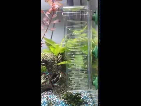 Dennerle CO2-Flipper