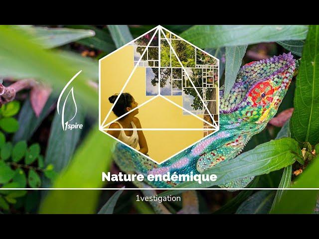 [Street art/reportage/ile de la Réunion] Nature