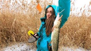 ОНИ РВАЛИ ПОВОДКИ ТАЩИЛИ В КАМЫШ Первый лед Рыбалка на жерлицы Ловля щуки Таня жжет