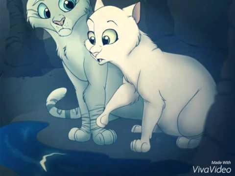 Коты воители кто такая половинка луны