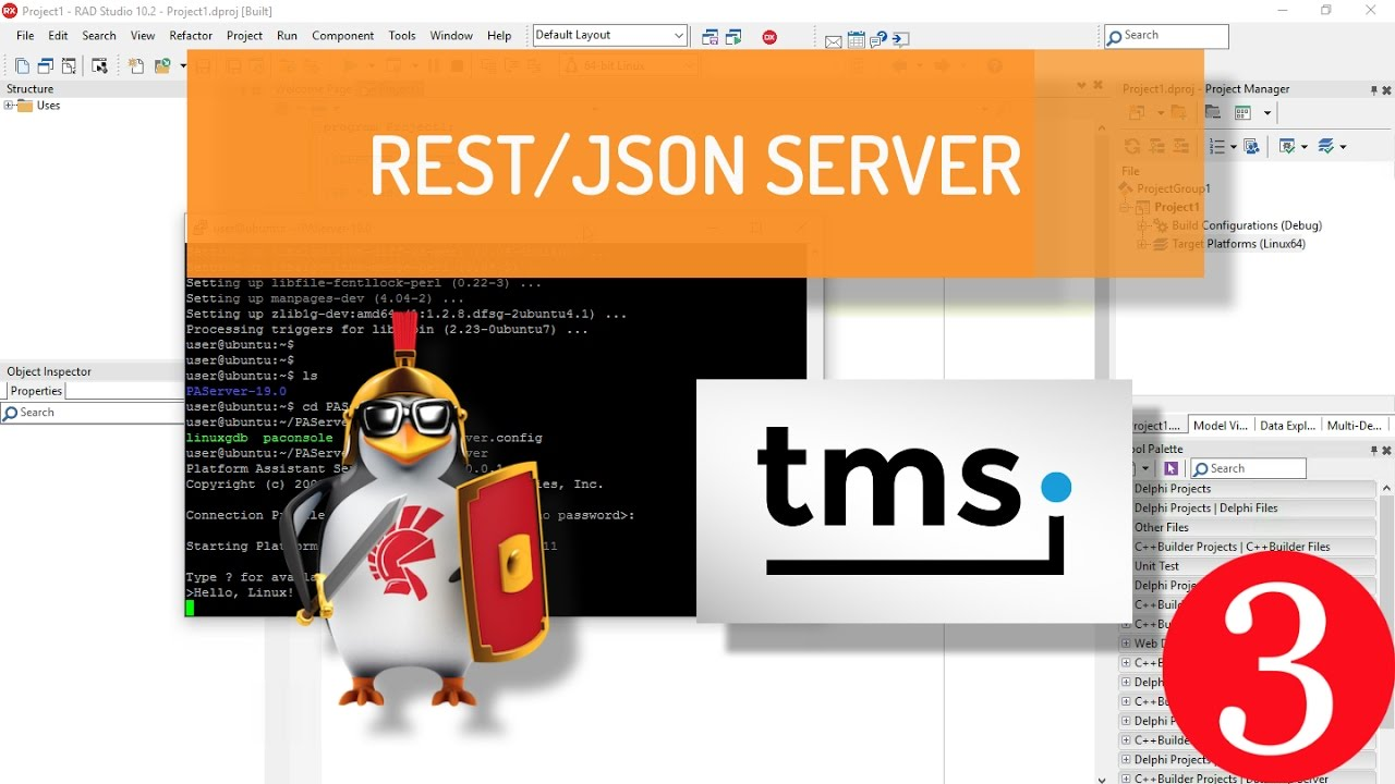 Creating a REST Server on Apache Linux using Delphi and TMS XData - Part 3:  WebBroker Apache module