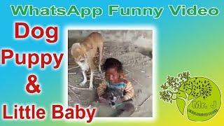 WhatsApp Funny Kids Video