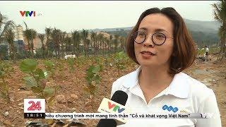 [VTV1 - Chuyển động 24h 19h] Sự kiện trồng hơn 10.000 cây xanh trên toàn quốc