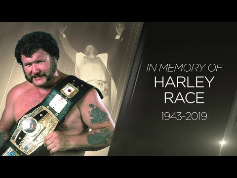 Harley Race Studio Shoot Interview DVD (Complete - FREE!) wwe wwf nwa hall of fame
