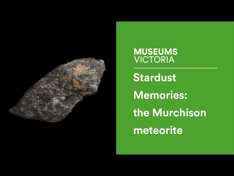 Stardust memories: 50 years of the Murchison meteorite