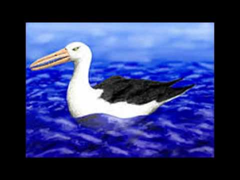 TOP 10 COOLEST ANIMALS OF THE NEOGENE PERIOD