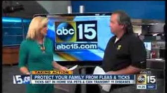 Truly Nolen's Steve Jansen of Phoenix, AZ discussing fleas and ticks on KNXV-ABC