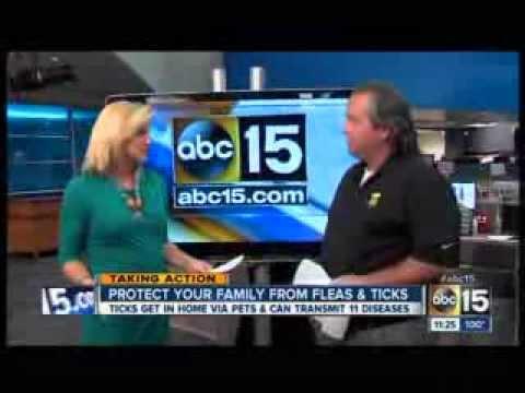 Truly Nolen's Steve Jansen of Phoenix, AZ discussing fleas and ticks on KNXV-ABC