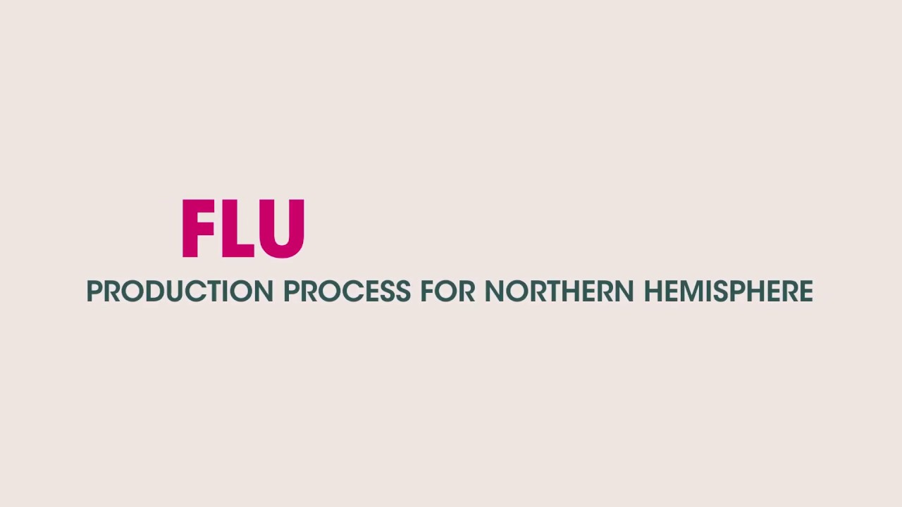 Flu Vaccine Production Process for the Northern Hemisphere