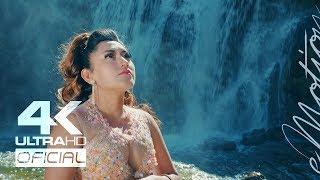 Luz Delia Tu Bella Flor - Lágrimas (Video Oficial) | eMotion Studios 2018