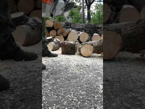 Chainsaw Stihl 064av In Action
