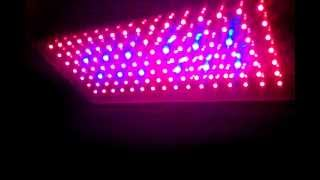 Led grow light - Светодиодные светильники для растений 120 W(Led grow light - Светодиодные светильники для растений 120 W Спектральные характеристики: Красный 660 nm, Синий 460..., 2012-04-28T08:19:27.000Z)