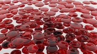 видео Нормы базофилов в крови, причины повышения и понижения уровня