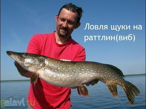 летняя рыбалка на щуку - 2014-07-02 19:52:18