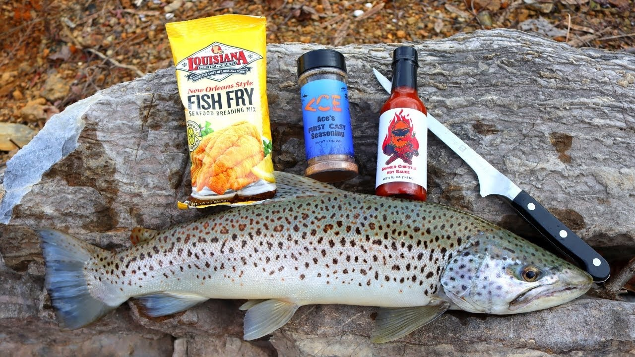 BIG BROWN TROUT Catch n' Cook (Winter Edition)