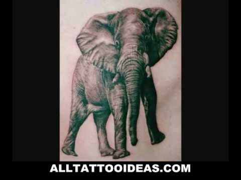 Animal Tattoos - Ideas & Designs