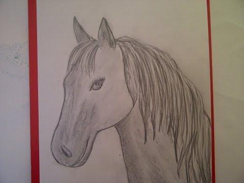 Как нарисовать гриву коня