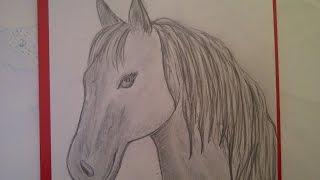 Как нарисовать голову лошади (коня, пони, единорога, пегаса). Уроки рисования для начинающих(Здравствуйте! Предлагаю вашему вниманию видеоролик, где я показываю, как очень просто нарисовать голову..., 2015-08-04T07:30:41.000Z)