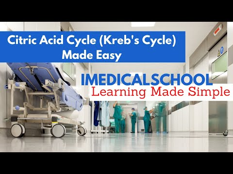 Medical School - Citric Acid Cycle (Kreb