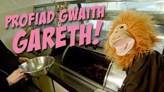 Y Siop Sglods – Profiad Gwaith Gareth!