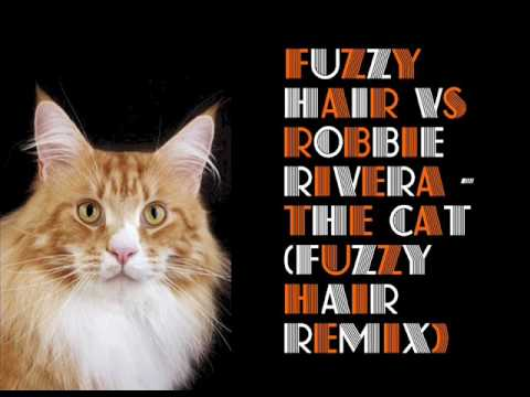 Fuzzy Hair Vs Robbie Rivera - The Cat (Fuzzy Hair Remix)