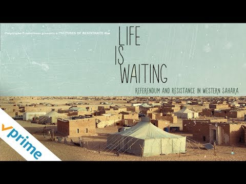 Life is Waiting - Trailer