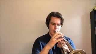 Уроки Трубы №2 - Упражнения для Трубы Без Языка.